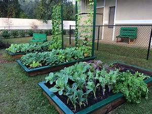 Get, Your, Garden, Growing, With, Raised, Beds