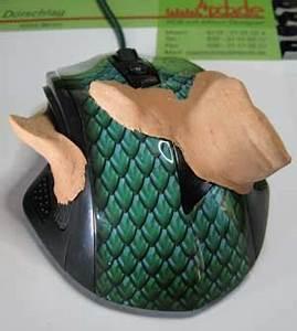 Wie Fängt Man Eine Maus : pc technik tipp eine linksh nder maus selbstgemacht ~ Markanthonyermac.com Haus und Dekorationen