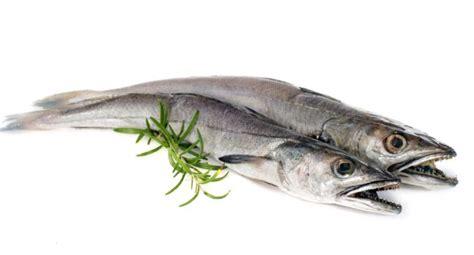 cuisiner du merlu baromètre des produits frais le merlu coûte moins cher 25 02 2015 ladepeche fr
