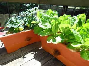 Patio Pickers Raised Garden Kit
