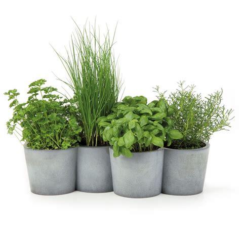 concrete  herbs pot potpot  konstantin slawinski