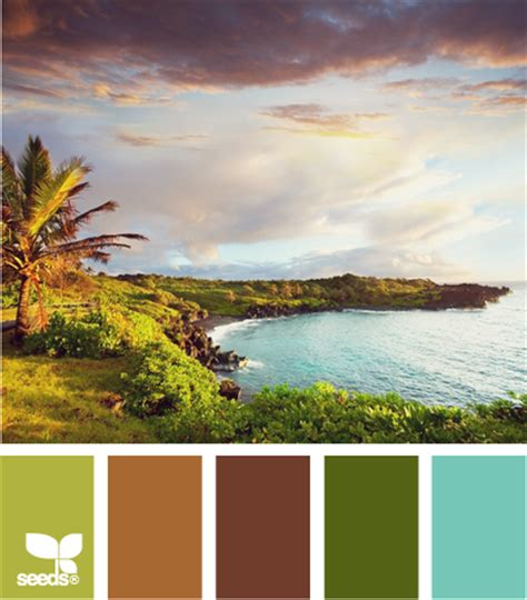 Confessions Of An Aditi Color Schemes