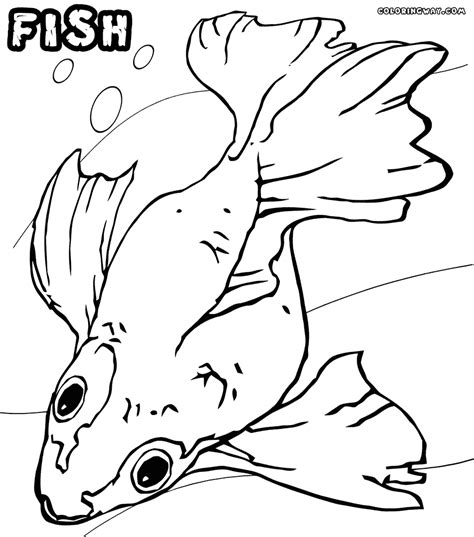 fish coloring pages coloring pages    print