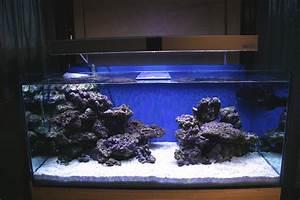 Dcoration D Aquarium Pierre