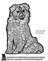 Shepherd Coloring Australian Pages Books Printable Aussie Shepherds Dogs Mini Adult Dog Getcolorings Well sketch template