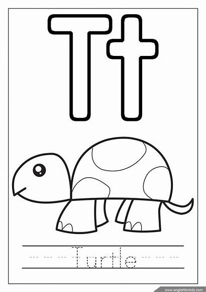 Alphabet Coloring Pages Turtle Letter Letters Abc