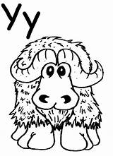 Coloring Yak Pages Preschool Alphabet Letter Yarn Pbs Sprout Worksheet Cattle Yaks Kindergarten Activities Crafts Projects Highland Pre Coloringhome Letters sketch template