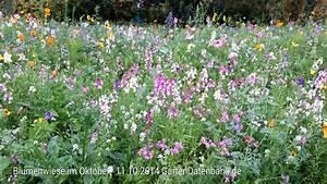 Garten Im Oktober : fotos bilder fotos bild mit infos ~ Lizthompson.info Haus und Dekorationen