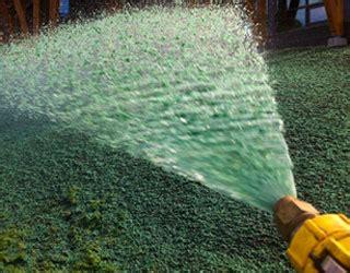 hydro lawn seed vally green hydroseed