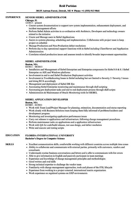 Server Resume Sle by Siebel Crm Developer Description Best Photos And