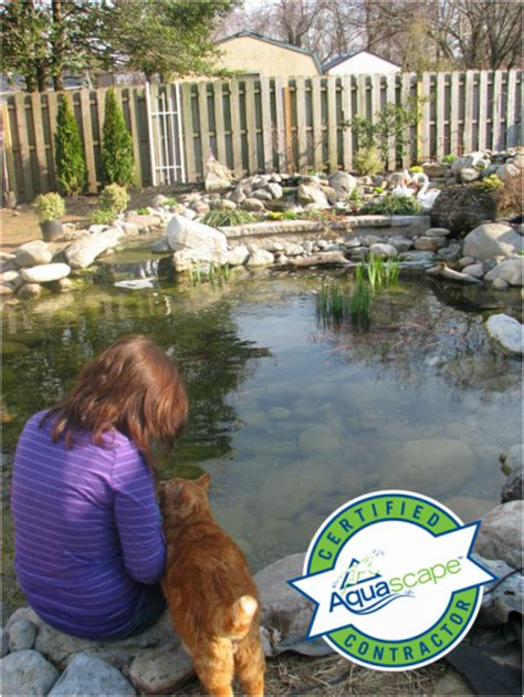 Aquascape Nj by Pond Contractor Service Maintenance South Jersey Camden