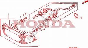 Taillight For Honda Ntv 600 1988   Honda Motorcycles