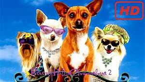 Beverly Hills Chihuahua 2 - 2011 - YouTube