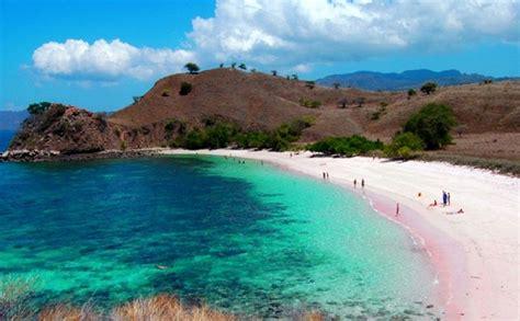 pantai pink pesona pasir merah jambu  lombok timur