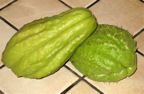 squash vegetable cook food mostly plants chayote or zucchini stuffed squash