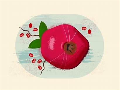 Pomegranate Table Series Pom Dribbble Hope
