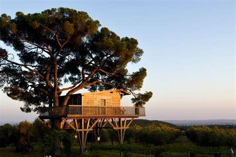 la piantata black cabin la casa sull albero black cabin la piantata casa