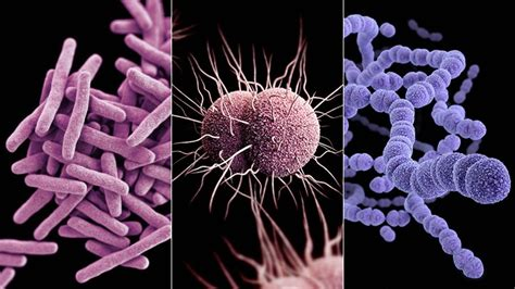 scary drug resistant infections