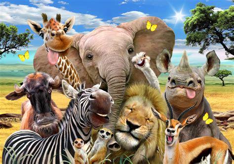 Animal Wallpaper For Walls - africa selfie wall mural wallsauce uk