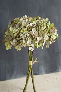 Antique Green Two Tone Hydrangea Bouquet