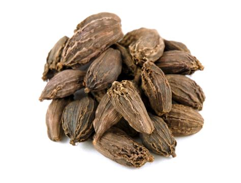 what is cardamom cardamom black cardamom pods savory spice