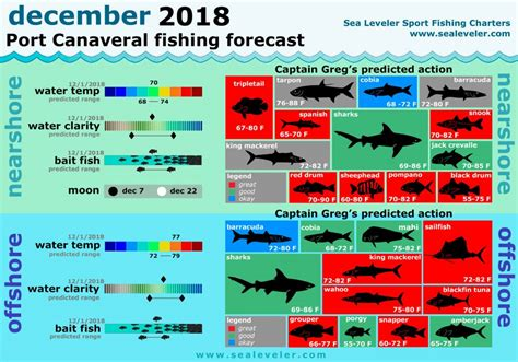 fishing december florida report canaveral january greg port forecast captain reports