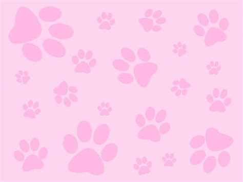 pink paw print pink paw print pink backgrounds