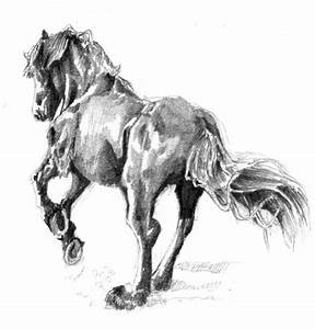 Horse Sketch 2 by L235 on DeviantArt