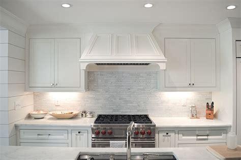 linear marble tile backsplash transitional kitchen