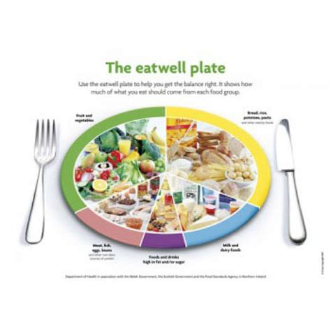 Diagram Of Healthy Plate by The Eatwell Plate Laminated Chart P99 Healthy