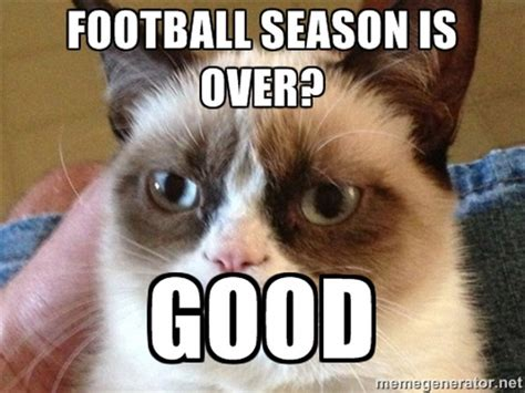 Football Cat Meme - 23 things in england better than the national football team probably the travel blog by