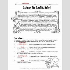 Exploring The Scientific Method Worksheet By Adventures In Science