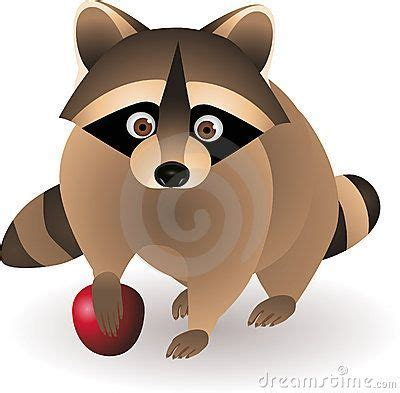 images  racoons  pinterest cartoon face
