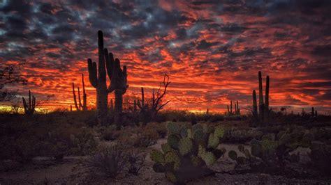 Tucson Arizona Sunset Flaming Sky Desert Landscape With