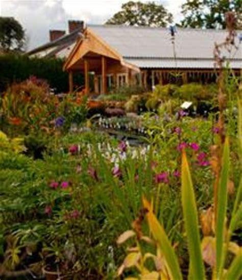 derwen garden centre farm shop guilsfield wales top