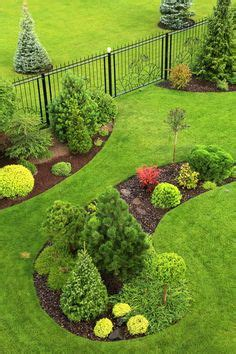 beautiful landscaping  evergreens small evergreen