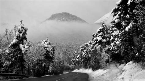 Download Winter Road Black And White 2 Wallpaper 1920x1080