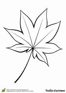 Feuilles D Automne à Imprimer : coloriage feuille de vigne en automne ~ Nature-et-papiers.com Idées de Décoration