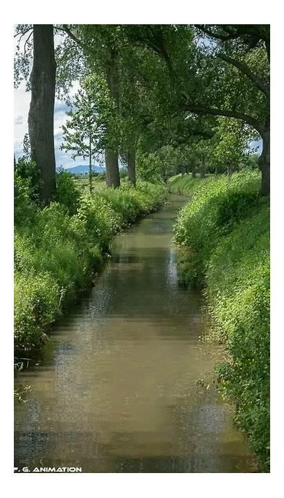 River Nature Gifs Paisajes Naturaleza Natureza Relax