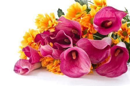 mazzo di fiori per una ragazza idee regalo last minute dell ultimo minuto