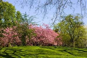 Notre top 10 des plus beaux parcs et jardins du monde