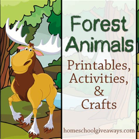 forest animals preschool theme forest animals printables activities and crafts 891