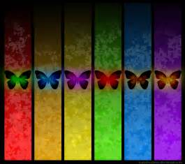 Colorful Rainbow Butterflies