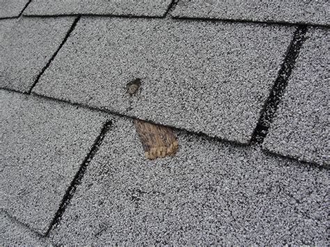 common roof installation defect short nails