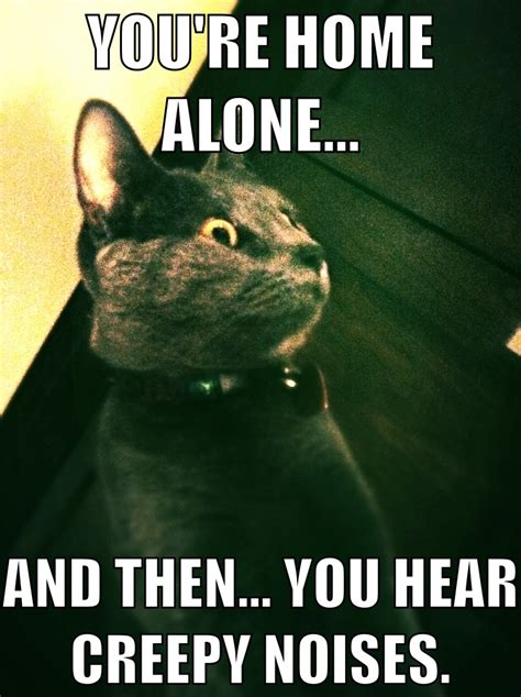Scary Memes - scary noises cat meme by lazybirdie on deviantart