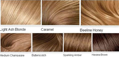 List Of All Hair Colors by 2014 Hair Color Ideas Medium Brown