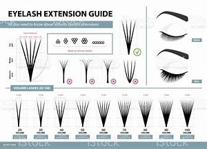 Eyelash Extension Guide Volume Eyelash Extensions 2d 10d