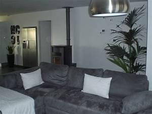 etourdissant deco salon gris et blanc avec salon deco With idee deco salon gris et blanc