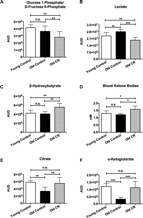 Caloric restriction reduced glycolysis, elevated ketone