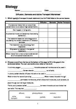 diffusion osmosis and active transport worksheet tpt